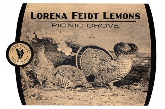 Etched-Picnic Grove